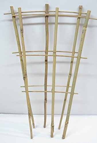 (Natural Color Bamboo Trellis 18 inches Tall - Quantity 2)