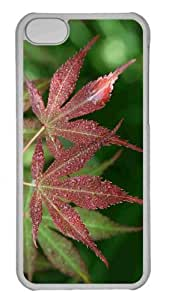Customized iphone 5C PC Transparent Case - Wet Japanese Maple Leaves Personalized Cover