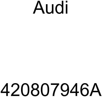 420807946A Genuine Audi Air Duct
