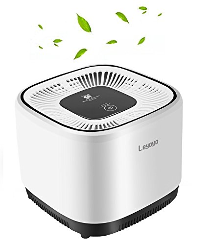 Desk Air Purifier with True Hepa Filter, Completely Mute and Strong Power Air Purifier for Bedroom & Babyroom & Office, Remove Bacteria, Mold, Pollen, Dust