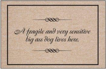 Fragile Sensitive Indoor Outdoor Doormat product image