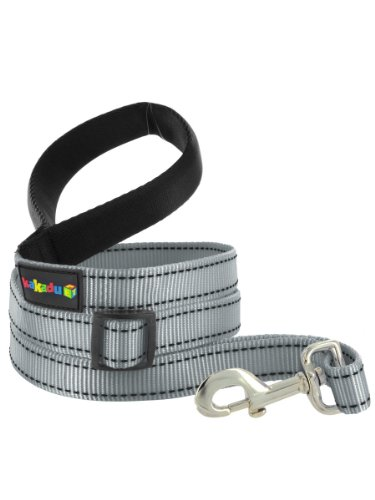 "Empire Tracks Extendible Lead, Long Nylon Leash by Kakadu Pet, Small, 1/2"" x 4-6ft, Metal (Silver with Black Stitch)"