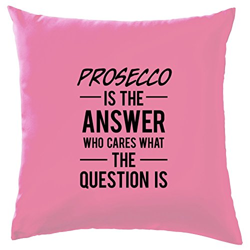 Prosecco Rose (Prosecco Is The Answer Cushion - 41 x 41cm (16