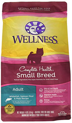 Wellness Complete Health Natural Dry Small Breed Dog Food, Salmon & Peas, 4-Pound Bag ()
