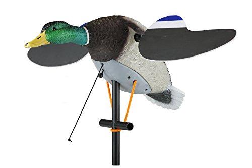 (Lucky Duck Lucky Air Force )