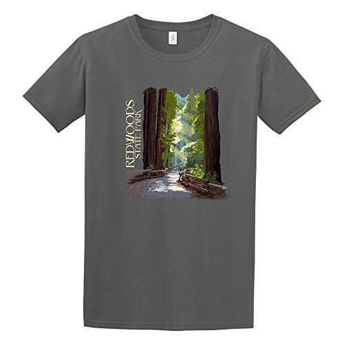 Redwoods State Park, California - Pathway in Trees - Contour (Charcoal T-Shirt Large)
