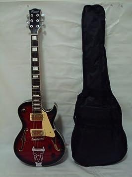 ktone cuerpo hueco 6 Cuerdas Guitarra Eléctrica, incluye bolsa, color granate: Amazon.es: Instrumentos musicales