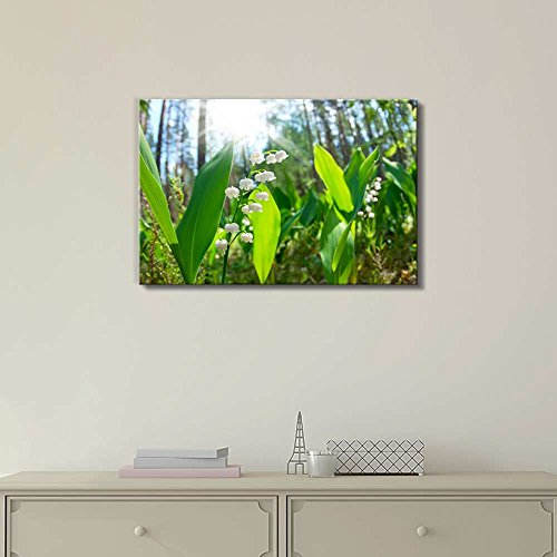 Blossoming Lilies of The Valley in The Forest in a Sunny Day Wall Decor