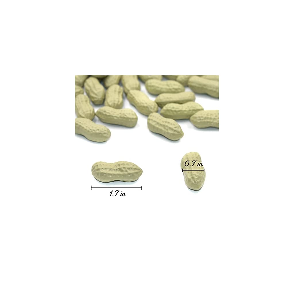 DLUcraft-Artificial-Vegetables-Peanut-Simulation-Peanuts-Fake-Vegetable-for-Home-Kitchen-Decoration-Teaching-Aids-50-PCS