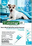 Advantage for Dogs 11-22 Lbs. Teal 4 Applications