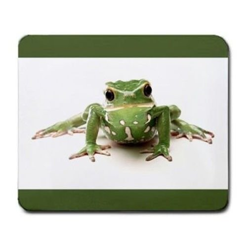 Cute Green Frog Rocks Mouse Pad ()