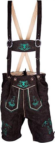 Almwerk Herren Trachten Lederhose Modell Platzhirsch in kurz und Kniebund braun grün, Größe Herren:50 - L - Bundweite 86-89 cm;Lederhose:Kurz