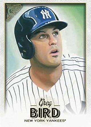 Amazoncom 2018 Topps Gallery Baseball 28 Greg Bird New