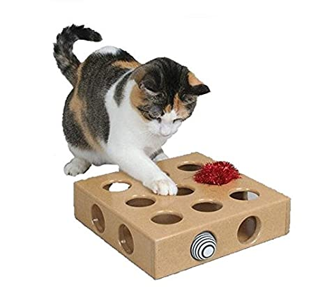 Amazon.com : OCSOSO Interactive Indoor Kitten and Cat Toy Puzzle Box - Great Gift for any Cat : Pet Supplies