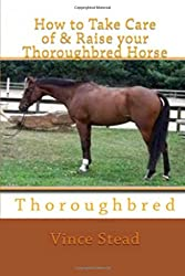 How to Take Care of & Raise your Thoroughbred Horse