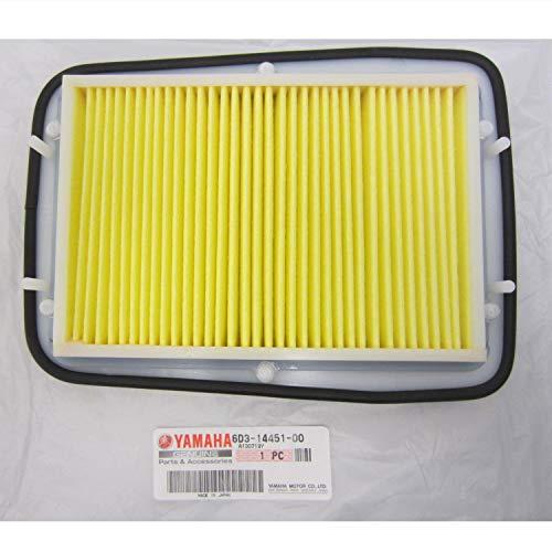 Yamaha OEM WaveRunner Air Cleaner Filter Element 6D3-14451-00-00 ()