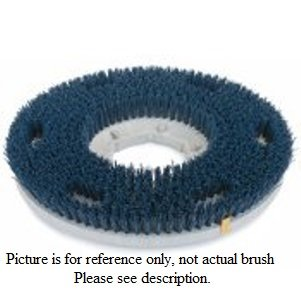 17 inch 180 Grit Brush - Tennant / Nobles - 240230 by Cleaning Equipment Direct