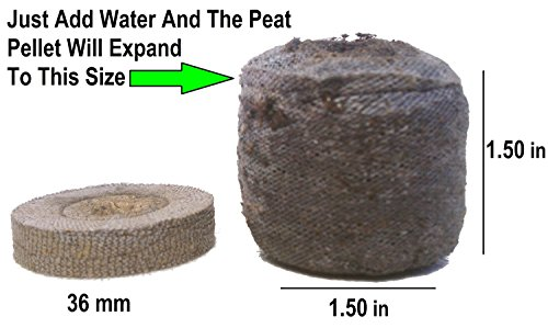 Root Naturally Jiffy-7 36mm Peat Pellets - 100 Cou…