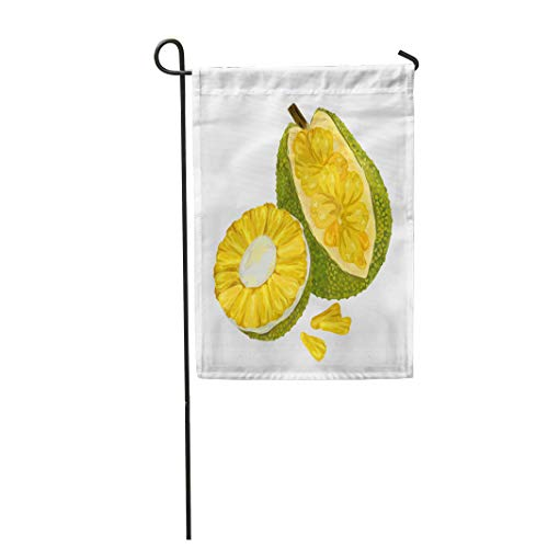 (Semtomn Garden Flag 28x40 Inches Print On Two Side Polyester Green Ripe Jackfruit Exotic Fruit Yellow Seed Agriculture Asia Bright Home Yard Farm Fade Resistant Outdoor House Decor)