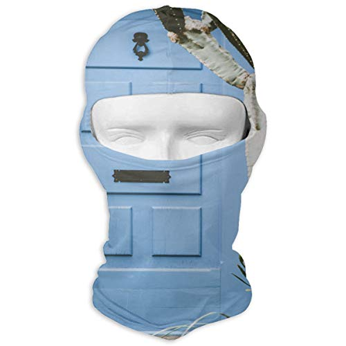 Balaclava Plant In Front Of The Door Full Face Masks UV Protection Ski Hat Womens Headcover for Hiking