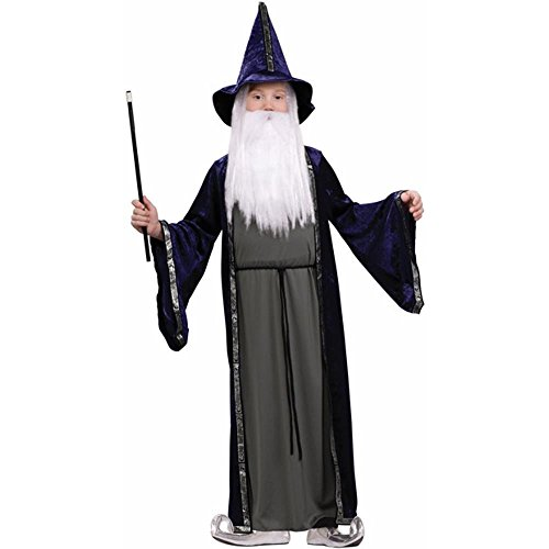 Wizard Costume - Child Costume - Large (12-14) by brandsonSale