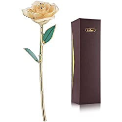 ZJchao Love Forever Long Stem 24k Gold Dipped Rose Flower, Love Gift to Wife, Mom, Girlfriend (White)