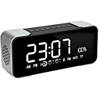 BOXAN Portable Wireless Bluetooth Stereo Speaker with LED Display, FM Radio, Dual Speakers with Amplifier, Support Micro TF Card/AUX 8 Hour Play for iPhone/iPad/iPod/Android Phone and Tablets - Grey