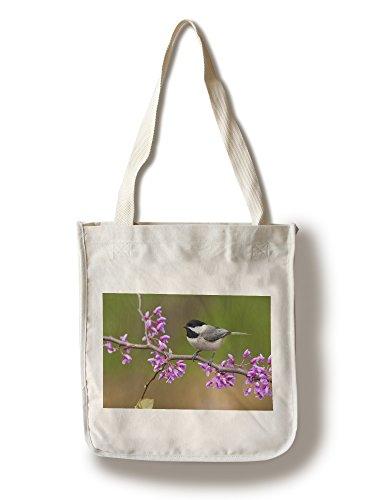 Framed Chickadees - Lantern Press Black-Capped Chickadee (100% Cotton Tote Bag - Reusable)