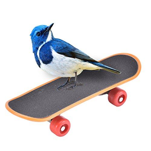 Glove Whistle (Bird Training - Pet Mini Skateboard Bird Training Plastic Stents Scrub Scooter Skateboarding Birds Funny Toys - Supplies Book Tools Treats Stand Whistle Bird Gloves Dogs Perch Methods Dummy Toys)