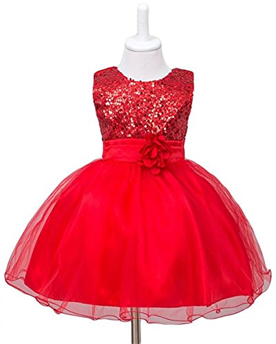 900f61a520 ZAH Sequin Mesh Flower Party Wedding Gown Bridesmaid Tulle Dress Little  Baby Girl(B Red
