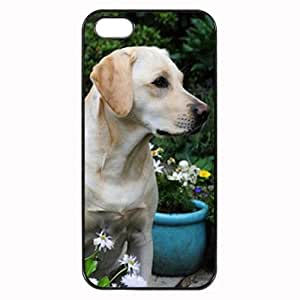 Custom LABRADOR DOG COVER CASE FOR IPHONE 4 4S MOBILE PHONE