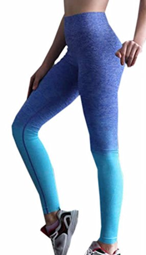 Patagonia Womens Baggies Shorts (ARRIVE GUIDE Womens Fitness Two Tone Workout Full Length Yoga Leggings Blue Large)