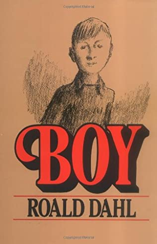 book cover of Boy