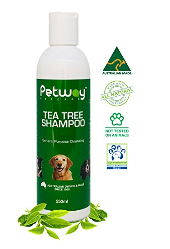 Petway - Dog Shampoo | Tea Tree Oil Pet Shampoo with Melaleuca Fragrance, Natural Dog Cleansing and Pet Odor Eliminator Deodorizer, Free of Phosphates, Parabens and Enzymes - Dog Coat Shampoo - 250ml