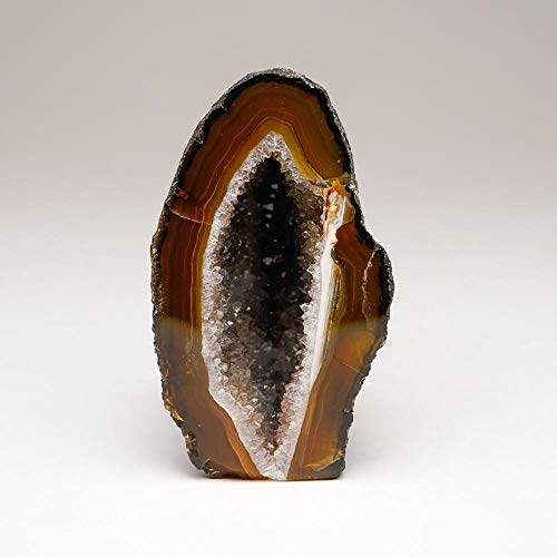 Astro Gallery of Gems Brown Banded Agate Geode from Brazil (439.1 Grams)