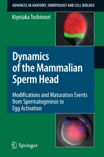Dynamics of the Mammalian Sperm Head: Modifications and Maturation Events From Spermatogenesis to Egg Activation (Advanc