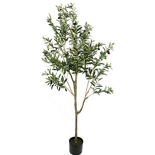 UNIQUE FOREST ARTS 6-Feet Olive Silk Tree,Artificial Silk Plant,Artificial Tree Green (6-Feet Olive Tree)