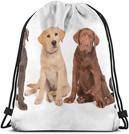 4つのラブラドール子犬巾着バッグジムダンスバッグハイキングビーチ旅行バッグバックパック36 x 43 cm