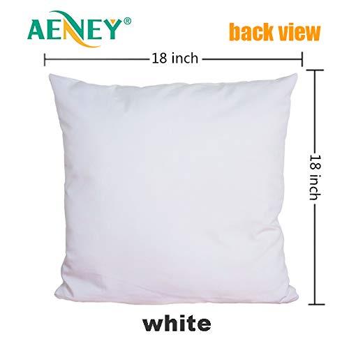 Amazon.com: AENEY A278 - Fundas de almohada de Navidad de ...