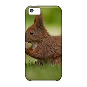 Premium Sweet Squirrel Back Cover Snap On Case For Iphone 5c