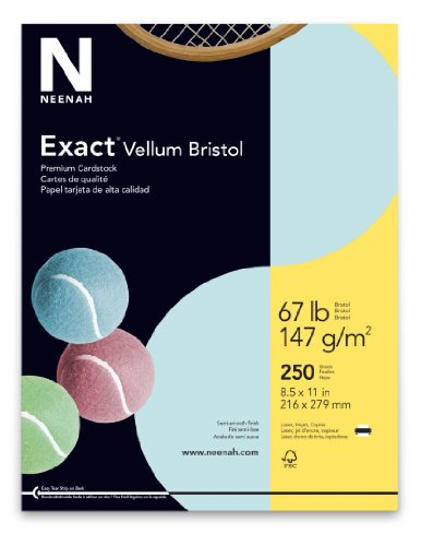 Wausau Vellum Bristol Cardstock, 67 lb, 8.5 x 11 Inches, Pastel Blue, 250 Sheets ()