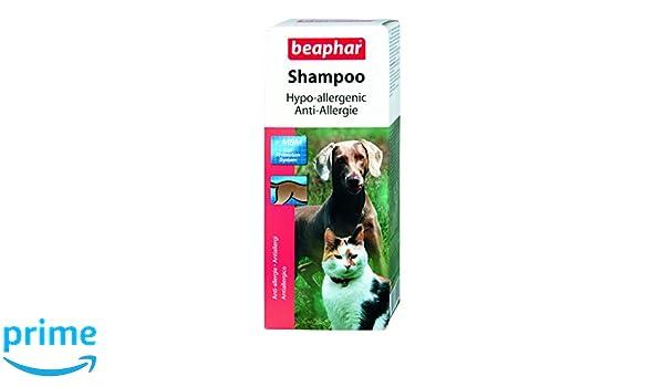 Beaphar 15290 (antialérgenos Champú, 200 ML: Amazon.es: Productos para mascotas