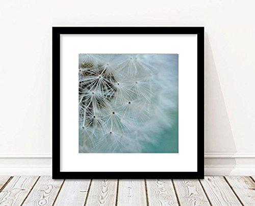 Dandelion Wall Art, Modern Flower Photography Print, Teal Turquoise Shabby Chic Floral Artwork, Nursery, Baby Boy, Girl Room Decor, Bedroom Wall Art 5x7, 8x8, 8x10, 10x10, 11x14, 12x12, 12x16, 16x20