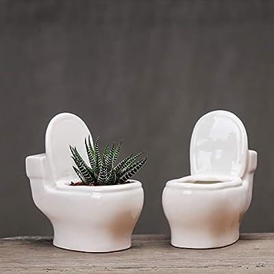 WISH HALLY WOOD 1pcs Planter Pot, Modern Minimalist White Closestool Ceramic Succulent Mini Planter Pot : Garden & Outdoor