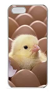 iPhone 5 5S Case Cute Chicks 02 PC Custom iPhone 5 5S Case Cover Transparent