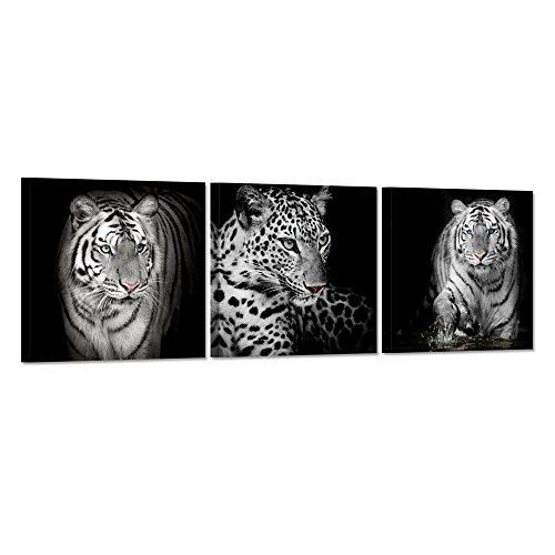 Hello Artwork - 3 Pieces Black White Leopard Print Tiger Canvas Wall Art Print Abstract Animal Picture Painting on Canvas Ready To Hang For Living Room Decoration (12x12inchx3pcs)