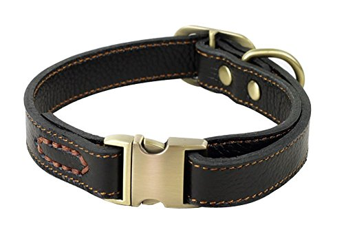 ZEEY Genuine Leather Adjustable Basic Dog Collar, Neck 30cm-43cm and 2cm Wide, Durable Easy to Use Copper Collar Buckle for Small/Medium Dogs with Dog Leash Hook (Black)