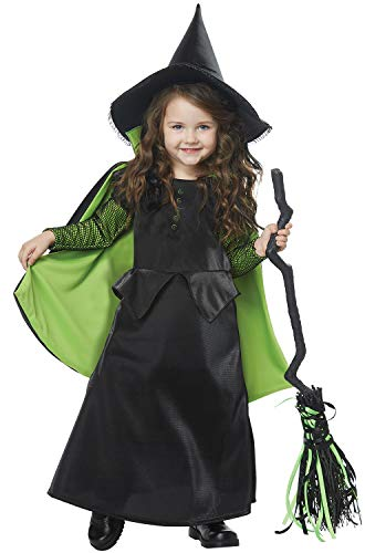 (Wicked Witch of Oz Toddler Costume)