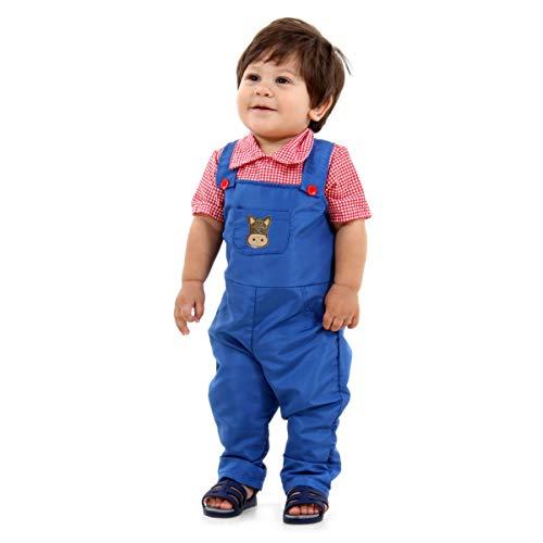 Fazendeiro Bebê Sulamericana Fantasias Azul/Vermelho P 1 Ano
