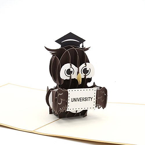Liif Graduation Owl Pop Up Card, 3D Graduation Card, 3D Greeting Card for Graduate Degree, Diploma Ceremony Invite, Congratulations, Gift for Graduating Students